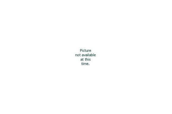 Wildschwein Edelgulasch handgeschnitten ca. 2,5kg